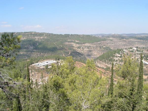 carbonate terrains